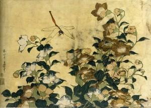 Hokusai libellule