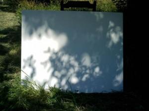 Ombres dansent sur la toile blanche